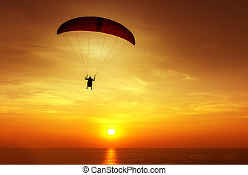 Silhouette of skydiver on background sunset - Silhouette of...