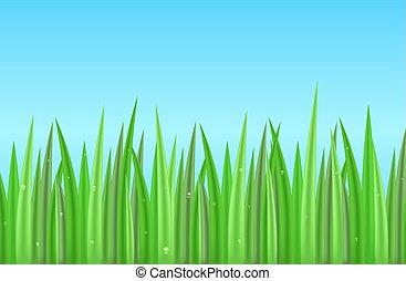 Seamless border with realistic green grass with dew drops....