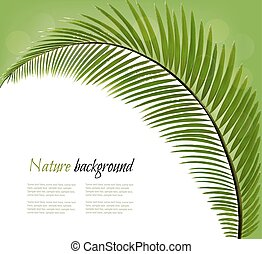 Nature background with a palm leaf. Vector