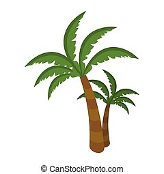 Palm Tree Isolated on White Background. Arecaceae - Palm...