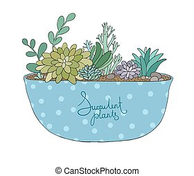 Succulents in pot. Agave, aloe and cactus. Hand drawing...