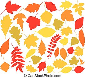 vector silhouettes of autumn leaves