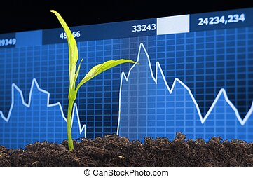 growth - finance or business growth concept with young plant
