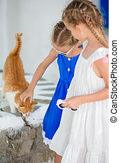 Closeup of Little adorable girls stroking a red cat in greek...