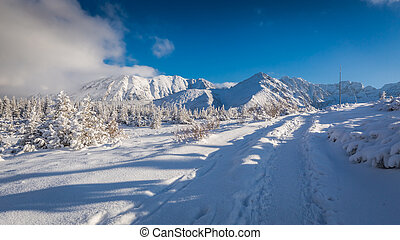 Winter mountain trail at sunset, Tatras, Poland
