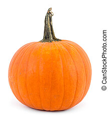perfect pumpkin over white background