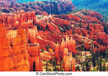 Bryce Canyon in Utah, USA