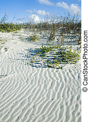 Sand Dune with rippled pattern