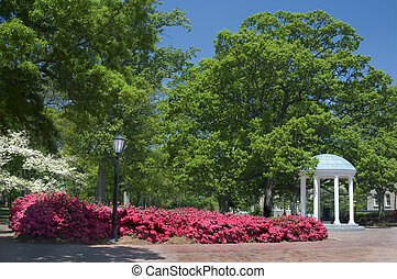 The Olld Well - The Old Well, University of North Carolina,...