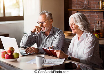Happy senior couple using laptop at the kitchen - Joyful...