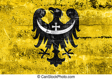 Flag of Lower Silesian Voivodeship, Poland, painted on dirty...