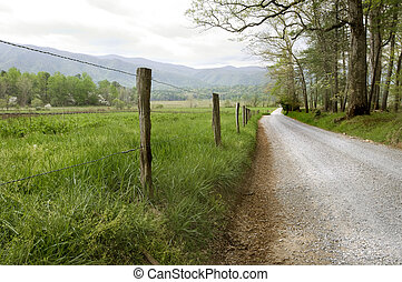 Country Road - Country road in Cades Cove, Great Smoky...