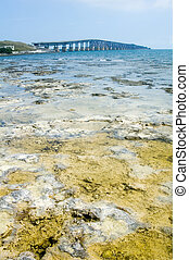 Florida keys bridge - Florida Keys Bridge with coral in...