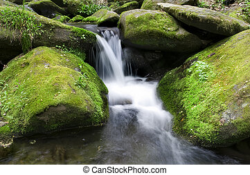Mossy waterfall - Beautiful Smoky Mountains waterfall with...