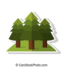 Isolated pine trees design - Pine trees icon. Plant nature...