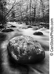 Mountain Stream - Little River, Great Smoky Mountains...