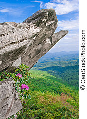 Blue RIdge Parkway - Beautiful view from the Blue Ridge...