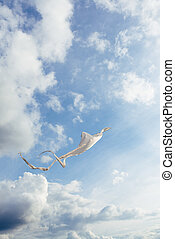White kite flying against the blue sky full of clouds....