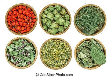 Set of healing herbs Dried grass - Set of healing herbs...