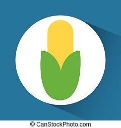 Cob inside circle design - Cob inside circle icon. Organic...
