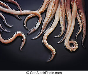 Squid tentacles - Close up of squid tentacles on a black...