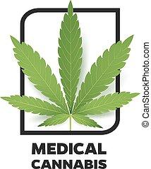 Realistic Marijuana leaf icon. Isolated on white background...