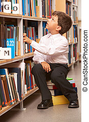 Pupil in library - Portrait of diligent schoolboy looking at...