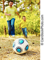 Ball on grassland - Image of ball on ground in park with...