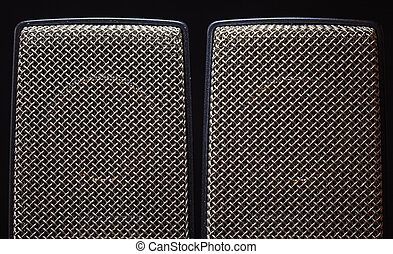Studio Large Capsule Microphones - Details of two studio...
