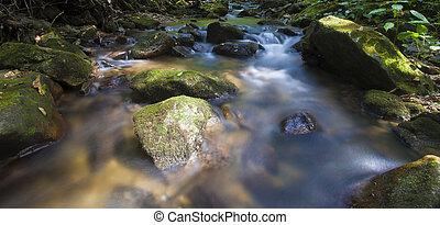 Pisgah stream running - Waterway on the Pisgah National...