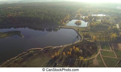 Aerial view of an autumn lake in forest with a bird's eye view