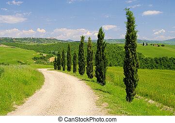 tuscany chapel 03 - Tuscany chapel 03