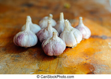 purple garlic still life