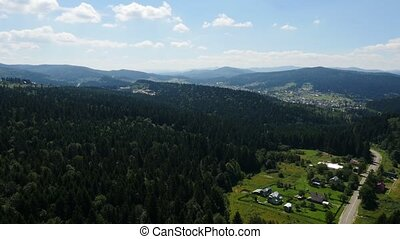 Aerial village in pine forest in the mountains Ukraine