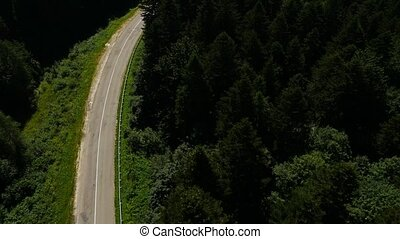 aerial flight road - Aerial road in the forest Ukraine