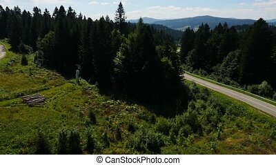 Aerial White Car Goes On The Road In The pine Forest in...