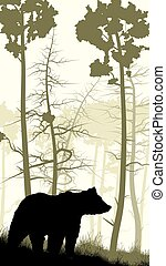 Bear on grassy hillside. - Vertical illustration of grassy...