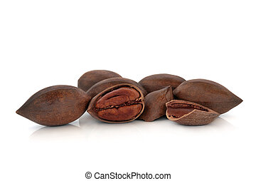 Pecan Nuts - Pecan nut group with nuts whole and one cracked...