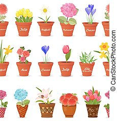 cute set seamless borders with lovely flowers planted pots for y