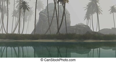 tropical island with palms on sand beach in fog