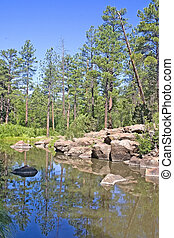 Billy Creek Pinetop, Arizona - Pond on Billy Creek in the...