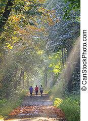 Jogger auf einem herbstlichen Waldweg