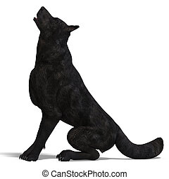 Black Wolf 3D rendering with clipping path and shadow over...