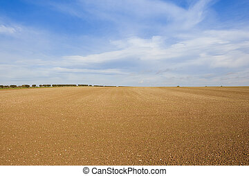 cultivated chalky field - a cultivated field with chalky...