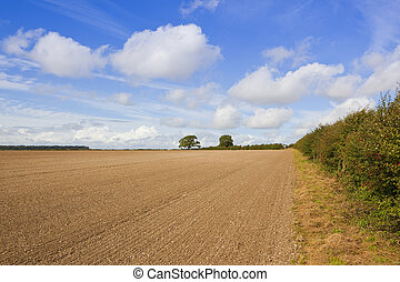 autumn cultivation - a cultivated field with chalky soil...