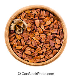 Shelled beechnuts in a bowl - Shelled beechnuts in a wooden...