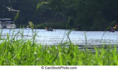 Team of sports pair kayaks racing on wild water river through reeds.
