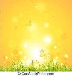 Hot summer evening. Nature background with space for text