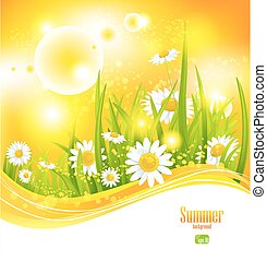 Sunny summer background with sunlight and flowers for your...