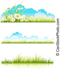 Collection of green grass